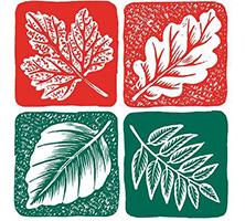 Evolve Consultancy Simons Group logo