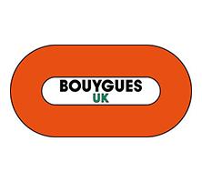 Evolve Consultancy Bouygues logo