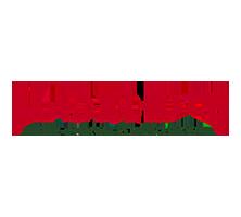 Evolve Consultancy Marylebone Cricket Club logo